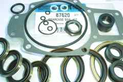87620 Lower seal kit