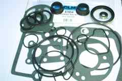 87654 Seal kit with water pump seal gasket.jpg
